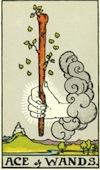Tarot Ace of Wands